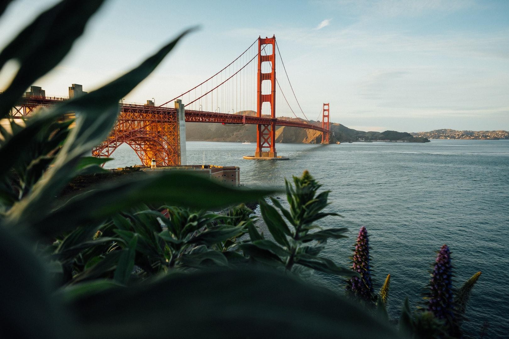 Decorative Image SFO Golden Gate Bridge Daylight